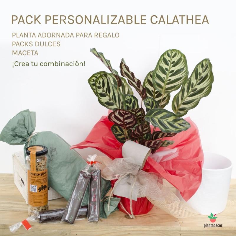 Pack Makoyana