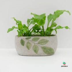 Macetero hojas cemento  gris