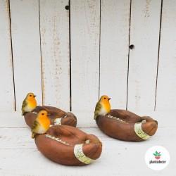 Petirrojo con pelota de Rugby