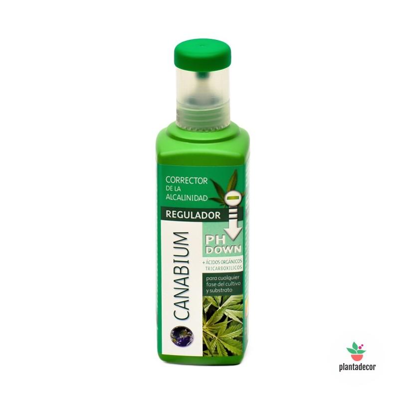 Canabium Regulador pH Down 500ml