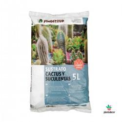Sustrato cactus y suculentas