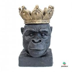 Gorila Negro Urban Jungle