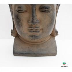 Buda pq