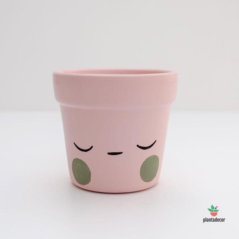 Maceta mini rosa carita dormida