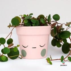 Maceta caractus por Ana Vila rosa