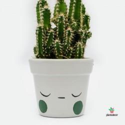 Maceta Caractus Ohmmm - Gris