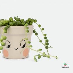 Maceta mini Caractus Ups Beige