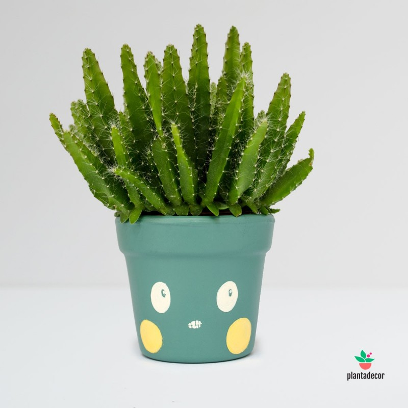 Maceta Caractus Grrr Verde
